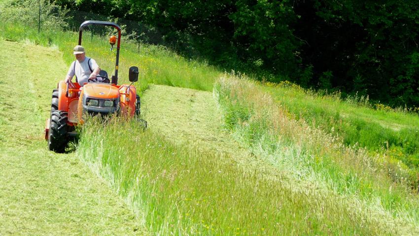 tonte-tracteur-orange