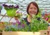 vente-plantes-fleurs